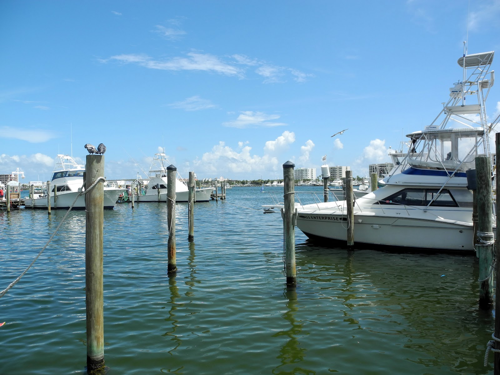 Librarian tells all three days in destin for Fishing piers in florida