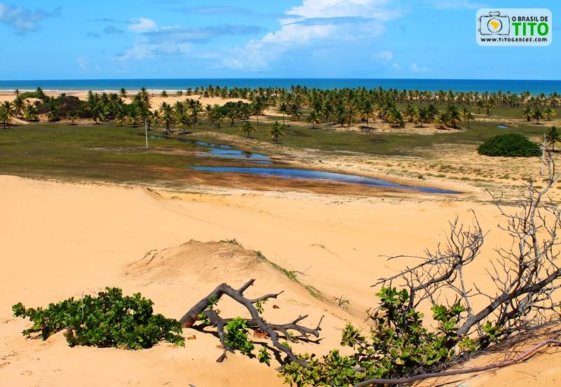Dunas, mar, coqueiros e vegetação próximos à Lagoa Redonda, na Reserva Biológica de Santa Isabel, em Pirambu, Sergipe