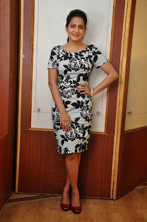 Actress Vishakha Singh Latest Picture at Rowdy Fellow Release Date Press Meet  12
