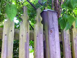 Vi samlar vackra staket!