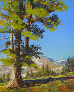 High Sierra Pine   SOLD