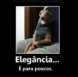 ELEGÂNCIA AO EXTREMO