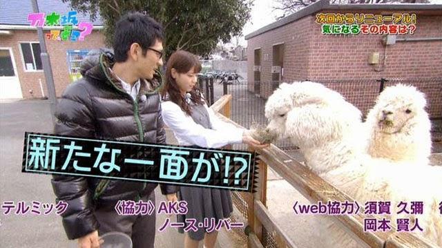 TV-Show-Baru-Nogizaka46-Nogizaka-Under-Construction-Jalan-Jalan-Ke-Kebun-Binatang