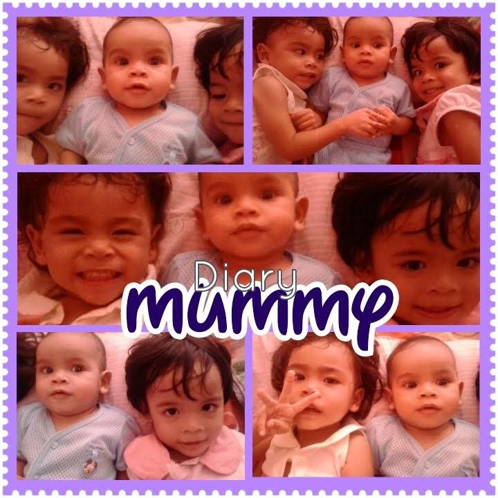 ~Diary Mummy~