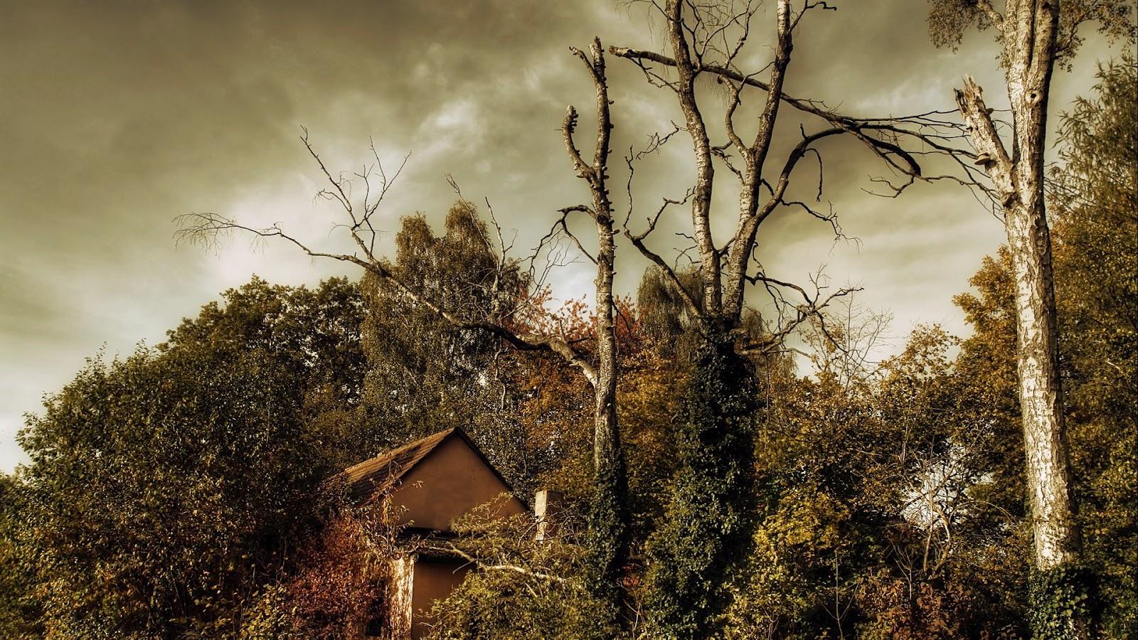 http://3.bp.blogspot.com/-m_PLBULhzl8/T4DbFhCJ0sI/AAAAAAAAmsE/_47-YFdqM78/s1600/Nature+HD+Wallpaper++(597).jpg