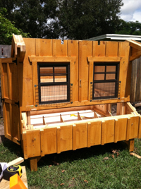 Buy Custom Chicken Coop