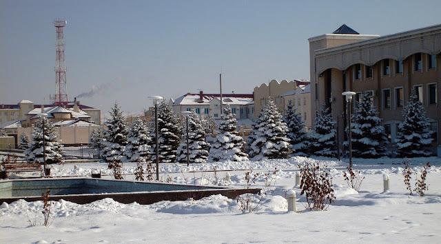 Заснеженные ели перед дворцом президента Ингушетии в Магасе