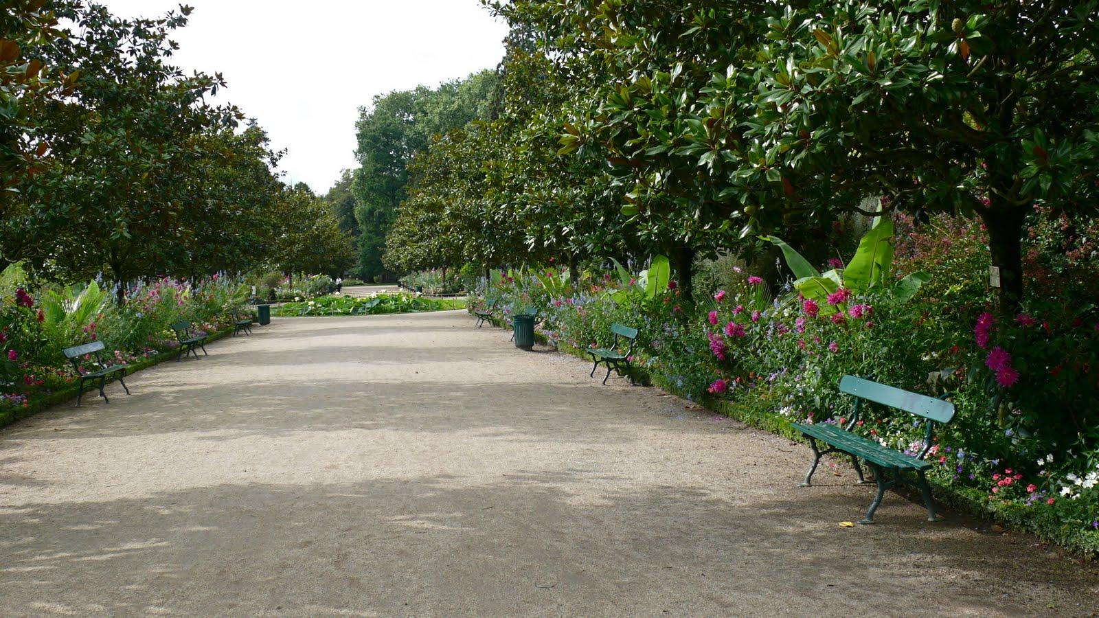 Fran ois gustin nature hd jardin botanique de tours for Jardin botanique tours