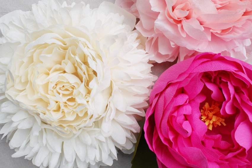 Corner blog giant paper peony piatas you might also like giant paper flowers diy mightylinksfo Gallery