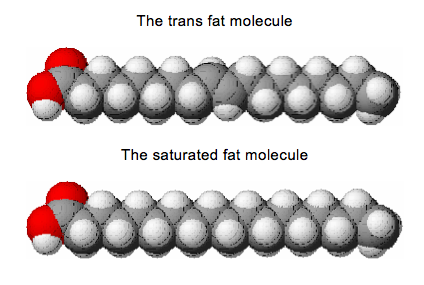research paper on trans fat
