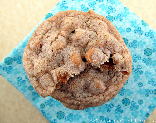 Butterscotch Blondie Cookies from Cinnamon Girl Recipes - Zesty South ...