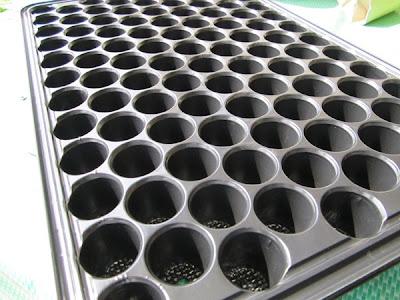 Dulang semaian digunakan untuk menyemai benih yang bersaiz sederhana, lazimnya tanaman sayur buah.