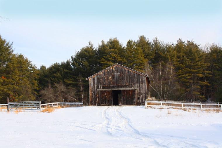 Ponderosa Barn