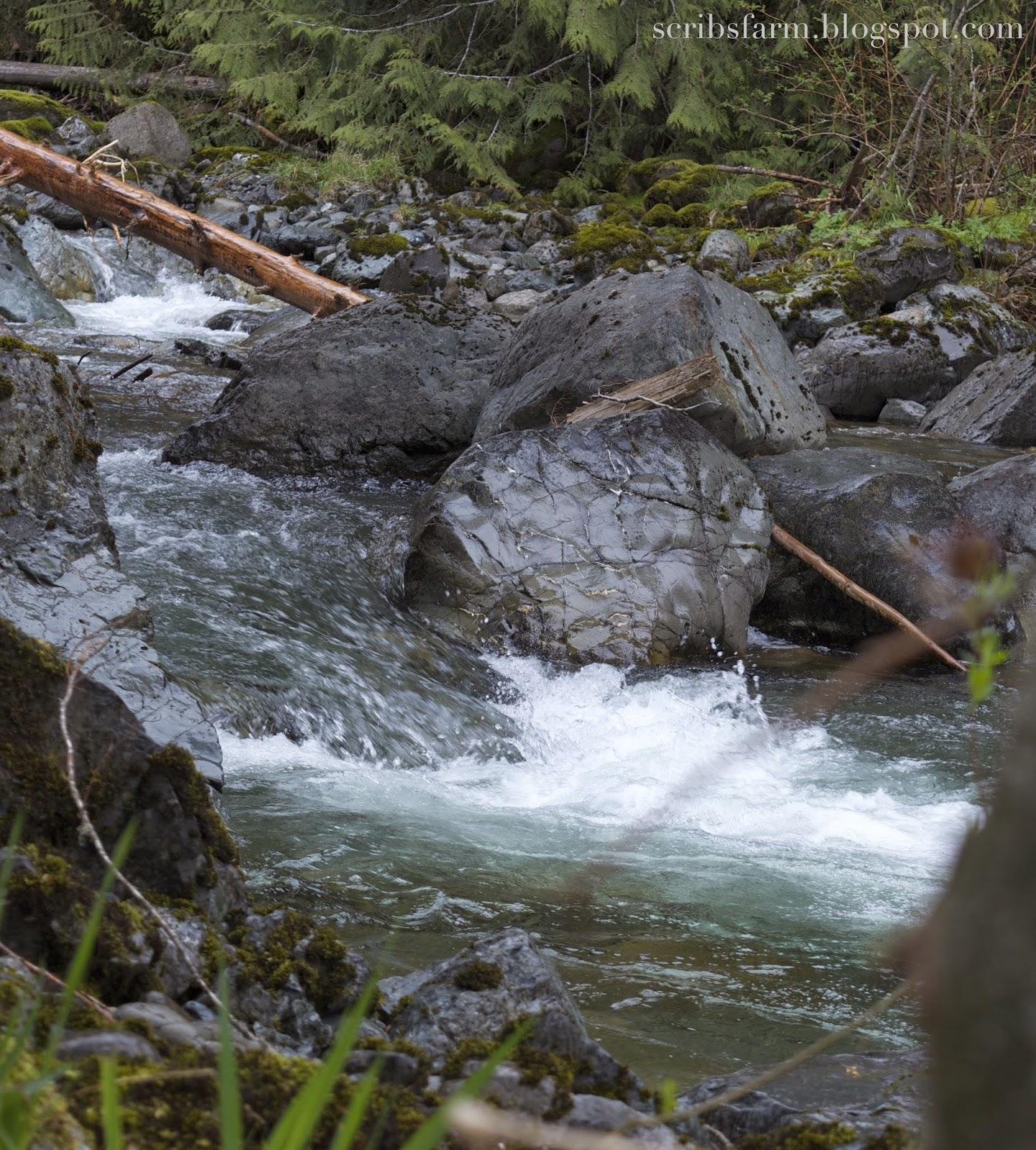 Cascade river rocks