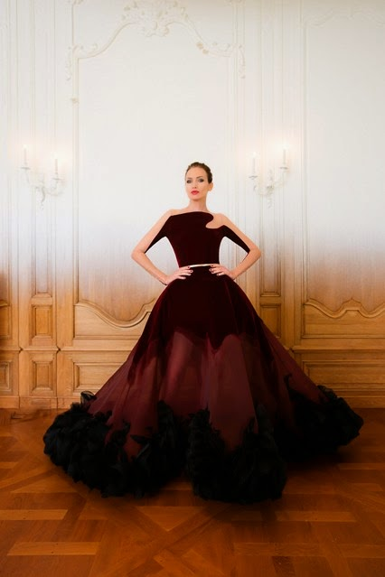ball gown evening dress stephane rolland