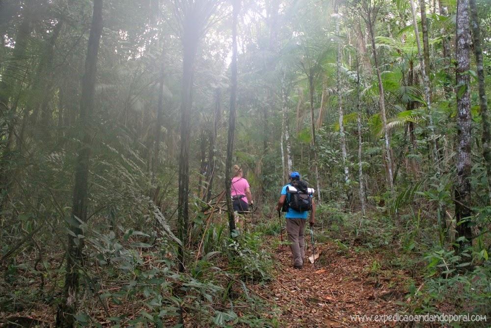 Trilha de Ponta Negra a Cairuçu das Pedras
