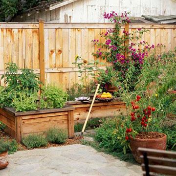 New Home Interior Design: Grow a Vegetable Garden in ...