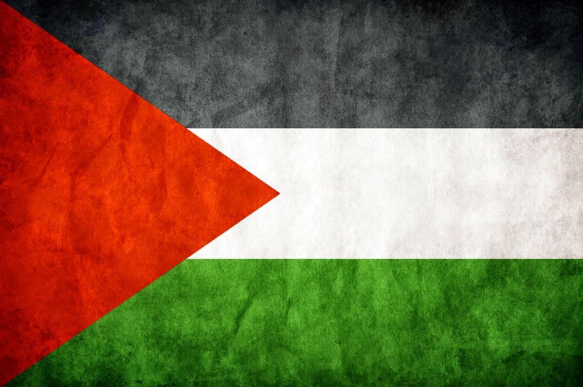 Solidaridad Internacional con el Pueblo Palestino!