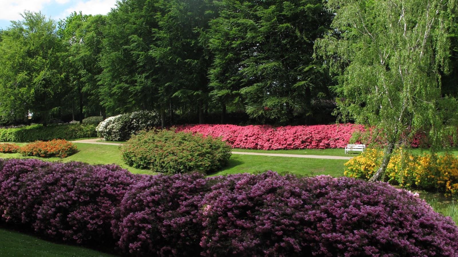 rhododendron park brønderslev