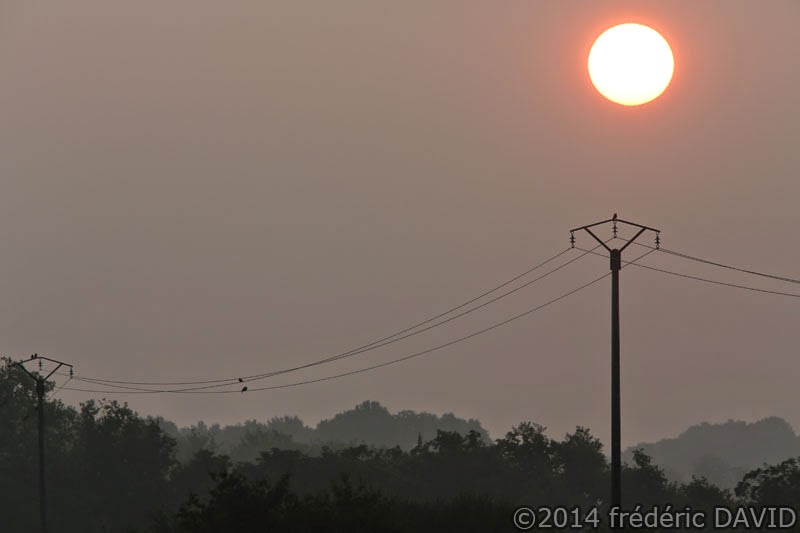 campagne rose aube soleil ligne électrique Seine-et-Marne