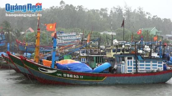Nhiều hành khách mắc kẹt ở Lý Sơn vì thời tiết xấu