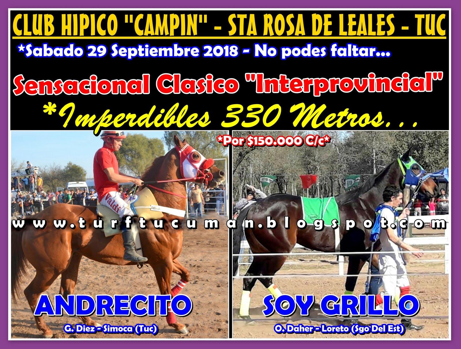 ANDRECITO VS SOY GRILLO