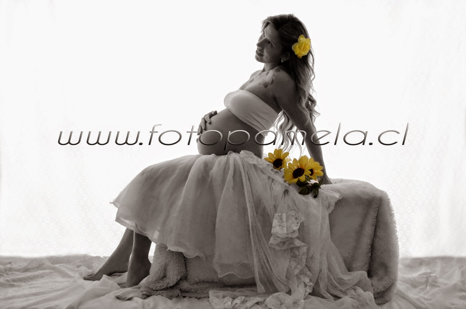 estudio fotografico para embarazadas chile