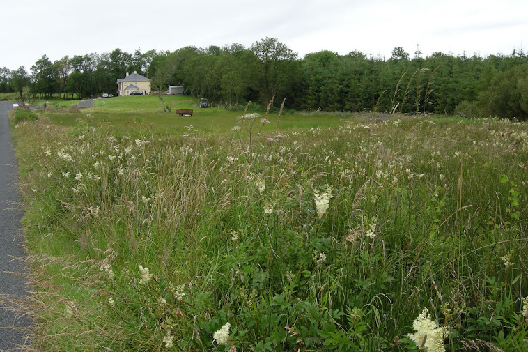 Soraghan Farm 2011