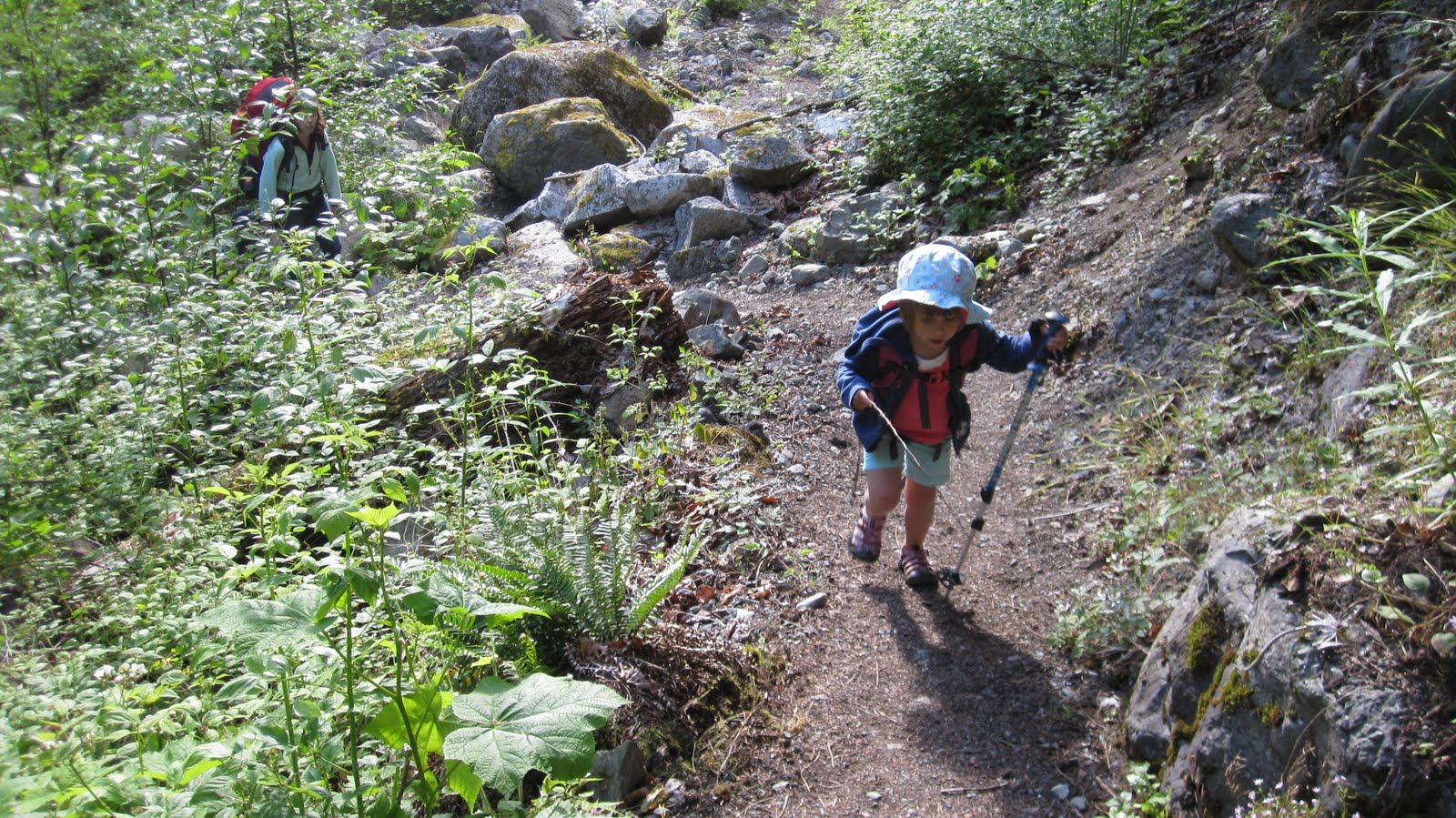 90845094fb92 American Alpine Institute - Climbing Blog  Backpacking with Kids