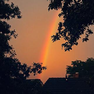 regenboog uit blog kostbaar