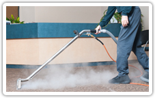 http://carpetcleaning-thewoodlandstx.com/cleaning-services/carpet-steam-cleaners.jpg