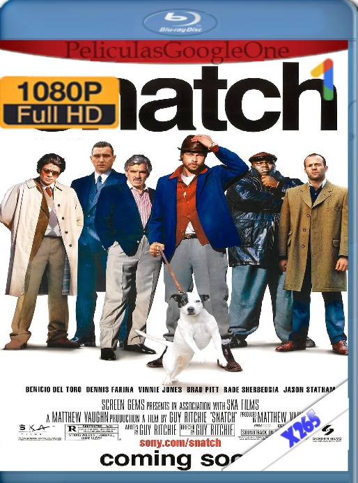 Snatch (2000) x265 [1080p] [Latino] [GoogleDrive]