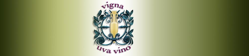 vigna uva vino