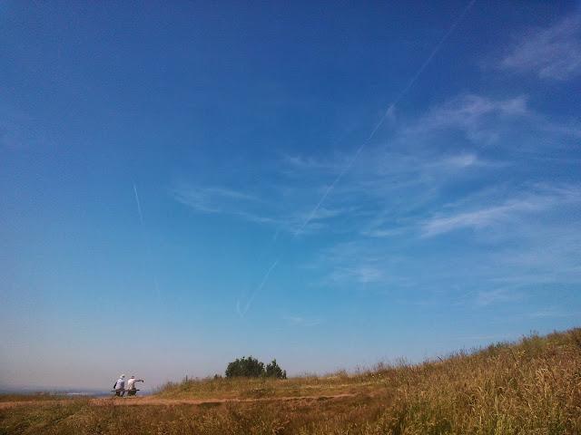 Clent Hills, Summer 2013