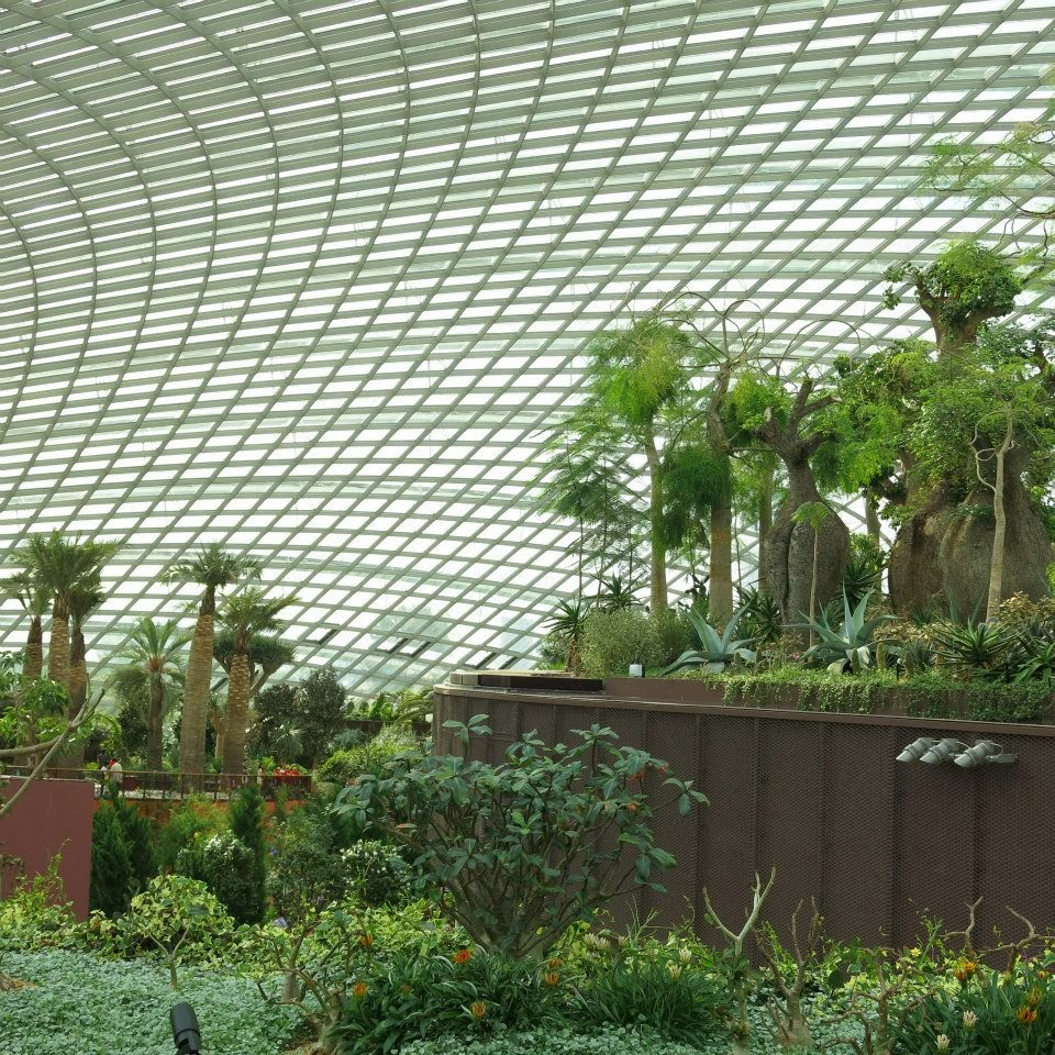Garden By The Bay Aircon missyimply: gardensthe bay part 2, flower dome and cloud forest