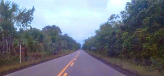 Entre Manaus, a capital do Amazonas, até a fronteira com a Venezuela, são 994 km percorridos pela BR 174, que passa também por Boa Vista, em Roraima.