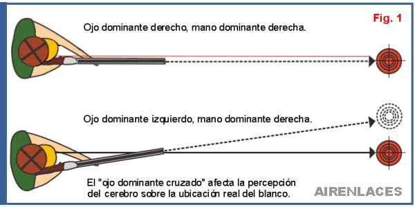"Lateralidad cruzada, Asimetría funcional, Cross Dominance"" border="