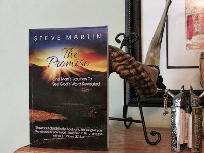 The Promise: One Man's Journey to See God's Word Revealed