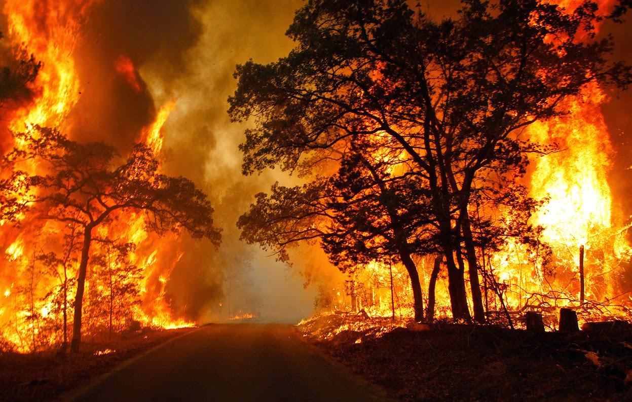 incendios mortales