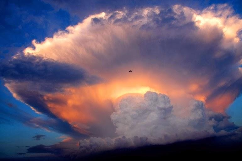 http://3.bp.blogspot.com/-meHejPf4D4E/UxjRhdY9FTI/AAAAAAAAYuQ/Ne-3DWKZqwA/s1600/the-15-craziest-things-in-nature-you-wont-believe-actually-exist-141.jpg