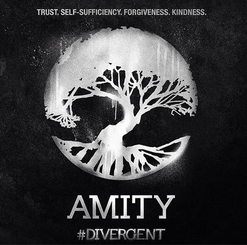 Divergent Amity