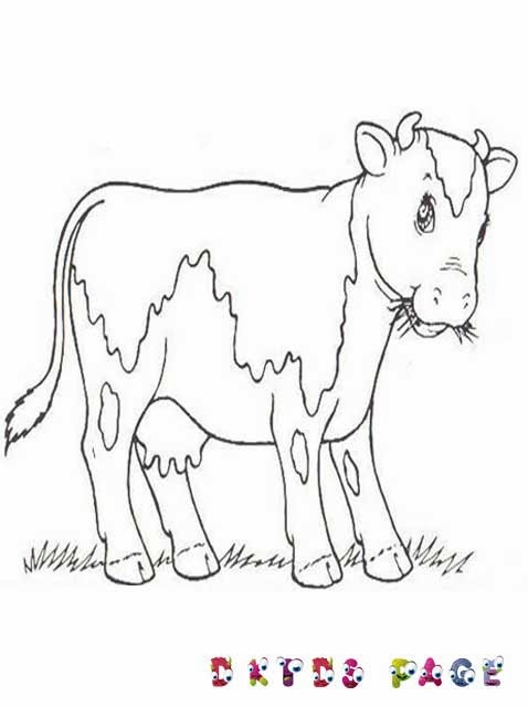 Cow Farm Coloring Pages Download
