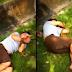 Video pencuri telefon dibelasah sampai mati di Bukit Mertajam kini viral
