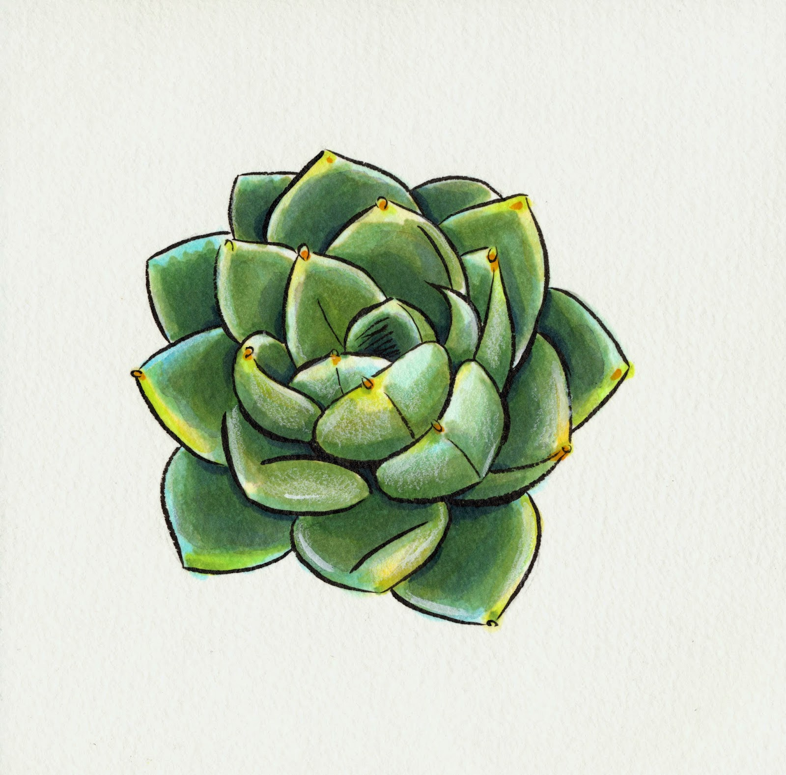 nattosoup studio art and process blog teeny tiny cacti