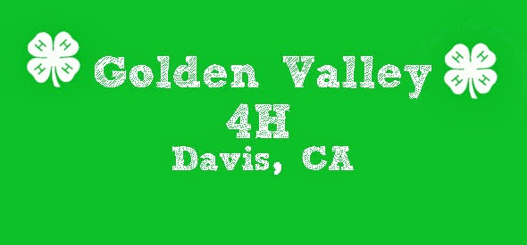 Golden Valley 4-H