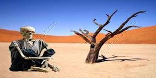 Um esqueleto no deserto