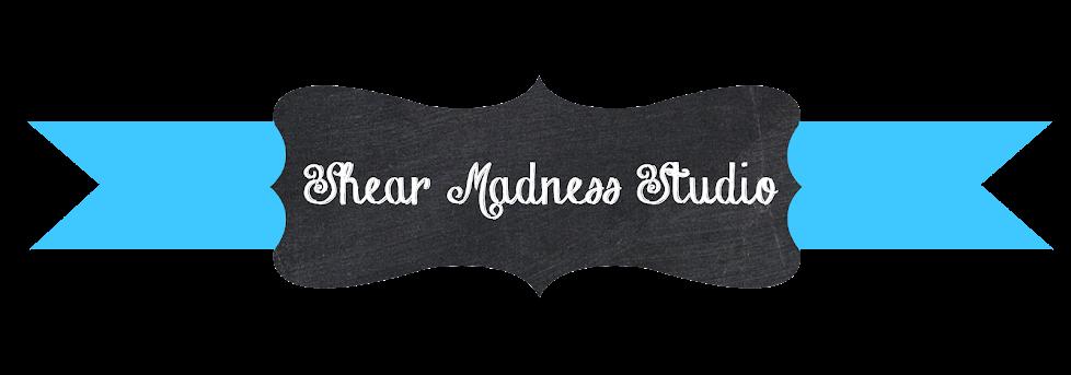 Shear Madness Art Studio
