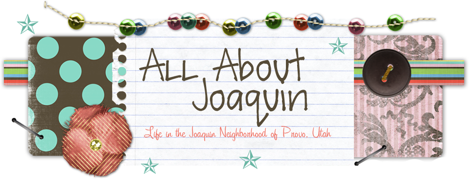 All About Joaquin: Life in the Joaquin Neighborhood of Provo, Utah