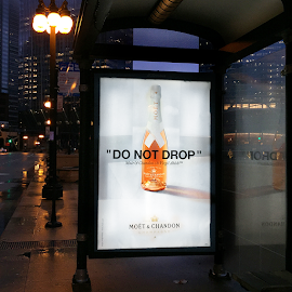Just dropped. DO NOT DROP. Moet Chandon c/o Virgil Abloh collaboration bus poster.