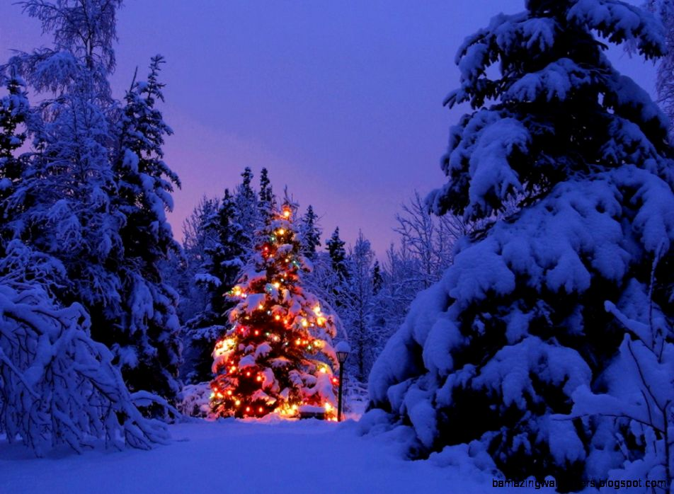 1000 images about Christmas Scenes on Pinterest  Christmas